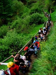 SEPÚLVEDA, senda de los dos ríos paseo guiado , RUTAS ORNITOLÓGICAS, senderismo en las hoces del duratón, ABANTOS SENDEROS DEL DURATÓN,